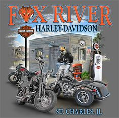 Harley Davidson Images, Harley Davidson T Shirts, Harley Davidson Dyna, Harley Davidson Motorcycles, Harley Bobber, Harley Bikes, Steve Harley, Harley Dealer, Harley Davidson Dealership