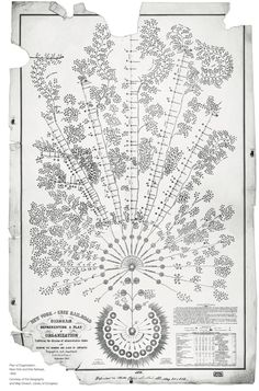 First Modern Organizational Chart, NY and Eerie Railroad, 1885