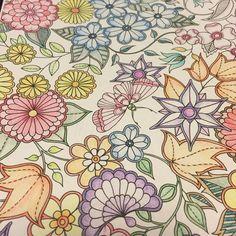 223d5b2a94c9d4e370574f683cfb1b67--johanna-basford-secret-garden-shading-techniques.jpg (736×736)