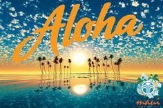 Lo logramos!!! Viaje de éxito nu skin Maui Hawaii
