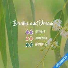 Breathe and Dream — Essential Oil Diffuser Blend
