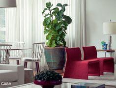 """O coração da designer de interiores Bianca Notari, dona deste apartamento, bateu forte quando a paisagista Lucia Cabrera sugeriu o fícus-lira para ocupar local de destaque na sala. """"Tenho outras plantas, mas esta me tocou de um jeito especial"""", diz a moradora, uma das sócias da Tride Interiores. Colocada num grande vaso (L'Oeil), a espécie atrai o olhar entre móveis de design – como as cadeiras vermelhas Glove –, além de irradiar boas sensações. """"Contemplá-la é um bálsamo para a mente.""""…"""