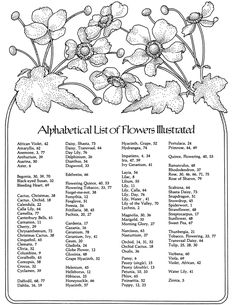 A Treasury of Flower Designs for Artists, Embroiderers and Craftsmen Dover Publications