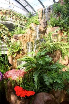 Changi Airport Singapore: Ten Top Things to Do Before Your Flight Exotic Places, Best Places To Eat, Singapore Things To Do, Singapore Changi Airport, Singapore Garden, Festivals Around The World, Garden Park, City Break, Amazing Destinations
