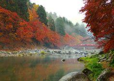Mơ màng thung lũng Korankei thơ mộng