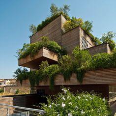 ☮ Green roof top