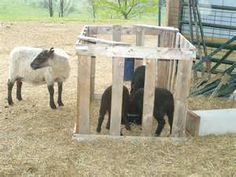 #goatvet says creep feeders are essential but don't need to be expensive. A lamb creeper feeder from Yahoo Image Search Results