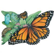 Monarch Butterfly Art #monarch #butterfly #art