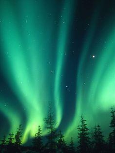 Aurora Borealis or Northern Lights, Alaska, USA Photographic Print by Tom Walker at Art.com