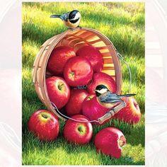 ZOOYA Diamond Embroidery DIY Diamond Painting Birds and Apple Fruit Diamond Painting Cross Stitch Rhinestone Decoration L'art Du Fruit, Fruit Art, Diamond Drawing, 5d Diamond Painting, Cross Paintings, Original Paintings, Art Paintings, Wildlife Art, Bird Art