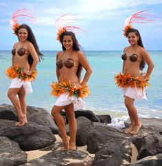 TAHITIAN - ALOHA HULA SUPPLY COSTUMES:  H9-coco bra; P3 - pareo; NH-HIP2-greenleaf/hau hipband; NH-HP- hairpiece