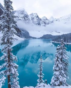 Winter in the Canadian Rockies, Moraine Lake - Nature/Landscape Pictures Winter Photography, Landscape Photography, Travel Photography, House Photography, Beauty Photography, Photography Ideas, Moraine Lake, Winter Scenery, Banff National Park