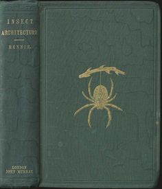 the spider book made of webs