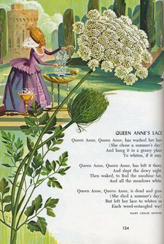 Eraldo Carugati in Childcraft The How and Why Library Volume 1, Poems and Rhymes Field Enterprises Educational Corporation 1972 Edition Nursery Rhymes Poems, Rhymes Songs, Kids Poems, Queen Annes Lace, Children's Picture Books, Vintage Children's Books, Vintage Art, Children's Book Illustration, Book Illustrations