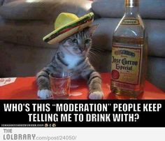 "Who's this ""Moderation"" fellow?"