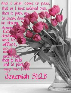 Jeremiah 31:28