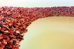 'And They Still Seek the Traces of Blood' door Imran Qureshi uit 2013. Het werk bestaat uit een omgeving gevuld met 24.000 grote vellen papier, elk op beide zijden bedrukt met Qureshi's eerdere vloerschilderingen. De vellen werden verfrommeld en gebruikt om samen met duizenden anderen een ruimte te vullen die door de toeschouwer bezocht kan worden. De beschaving en haar vermogen tot vernietiging en onderdrukking op basis van mogelijke verschillen tussen mensen vormt een centraal thema.