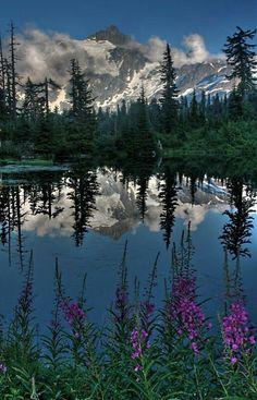 Mt. Shuksan .....NORTH CASCADES NATIONAL PARK.....a 504,781 acre park established in 1968 in Washington....includes Ross Lake, Lake Chelan, Cascade Pass, Mount Shuksan, Mount Triumph, and Eldorado Peak