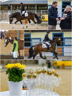 We met breeders and saw great horses! It was a nice day in Vienna! Thank you, Equestrian Centre Austria!