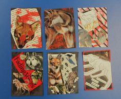 Middle school: Artist Trading cards, persuasive theme; this one was about a statement about the extinction of wolves.