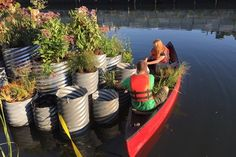 """Floating Garden Cleans As It Grows In One of Most Polluted Waterways In US"" ""The Gowanus Canal has been polluted by garbage and industrial waste for years, but now a floating garden called 'GrowOnUs' is filtering the river as it blooms."""