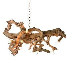 Canopy Designs Driftwood Chandelier