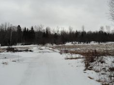 Prime country setting, 33 acres, minutes from Lake Umbagog or Sunday River ski area. Hunt, fish, snowmobile and ATV. Property offers privacy, woods and fields, apple trees and abundant sightings of wildlife such as deer, moose, bear and turkey. Great spot to build your dream escape.