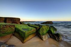 Mossy Rocks. Bar Beach, Newcastle NSW, Australia Australian Continent, Newcastle Nsw, Central Business District, Largest Countries, Western Australia, Landscape Photos, East Coast, Beautiful World, Places To See