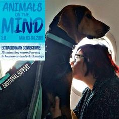 Interested in the benefits of emotional support animals for #autistics - Come to @UofDenver conference in May to see #BeccaLory and #BarryPrizant --50% discount for #autistics https://www.du.edu/humananimalconnection/?utm_campaign=coschedule&utm_source=pinterest&utm_medium=Geek%20Club%20Books&utm_content=Institute%20for%20Human-Animal%20Connection%20%7C%20University%20of%20Denver