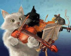 =^..^=  ...but why doesn't the symphony have to begin until 3:00am?