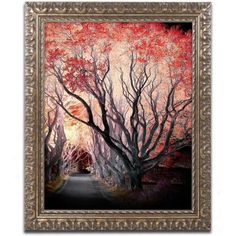 Trademark Fine Art Powerful One Canvas Art by Philippe Sainte-Laudy, Gold Ornate Frame, Size: 11 x 14