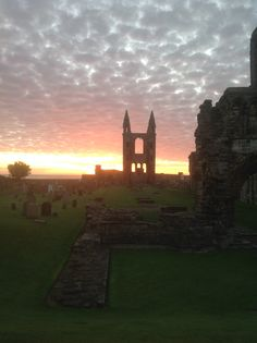 Just before sunrise at St Andrews Cathedral- so many 'hidden delights' to be discovered among the ruins and in the graveyard. Such an amazing atmosphere the more so when there are few people visiting.
