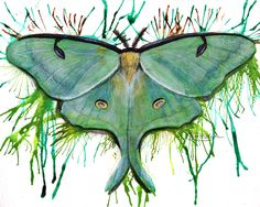 Messy Butterflies & Moths - A series of paintings - MORE ART, LESS CRAFT