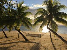 Matangi Private Island Resort - UPDATED 2017 Prices & Reviews (Matangi Island, Fiji) - TripAdvisor