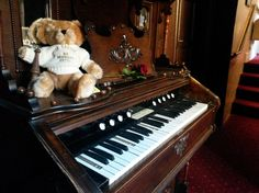 How do I tell Lumley Bear that the Ladies of Lumley will be performing at our Mothers Day afternoon tea - not him?