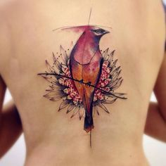 Sketch work style northern cardinal tattoo on the back. By Victor Montaghini (São Paulo).