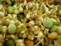 Mixed Bean Sprouts: How to make Mixed Bean Sprouts at Home