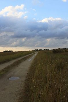 South Point Road, Ocracoke Island. My favorite road ever.