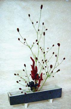 Floral Art - 久芳太樹 - Álbuns da web do Picasa