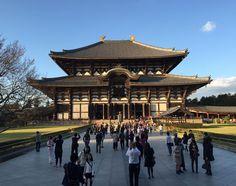 Huge temple pretty light. #nofilter #latergram #todaiji #nara #japan #東大寺 #奈良 #travel #instatravel #instagramjapan #goldenhour