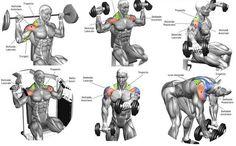 Best Shoulder Workouts #ShoulderWorkout