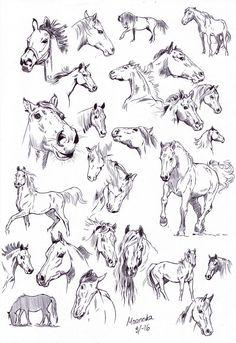 Ballpoint pen sketches by NillaMustikka