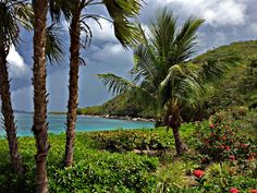 Please vote for this entry in USVI & BVI Photo Contest! Photo Contest, To Go, Mountains, Places, Nature, Travel, Lugares, Naturaleza, Viajes