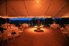 Veramar Vineyard Wedding Reception Photo