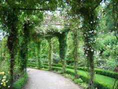 Alnwick Castle Gardens | In the Rose Garden, Alnwick Castle Gardens, July 2012.