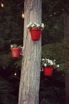 Check out how you can create a beautiful landscape with Hanging Tree Pots and Hanging Outdoor Lights  | Outdoor Inspiration, DIY Decor, Hanging Flower Pots, Gardening, Beautiful Lanscapes |