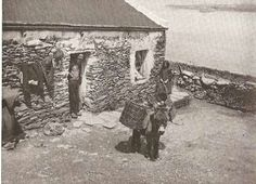 Blasket Islanders : Images from Ireland in the 1920s and 1930s Taken from The Spirit of Ireland by Lynn Doyle