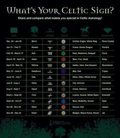 """""""What's your celtic sign?"""" Hilarious! So, rowan, grey, green dragon, coral?!"""
