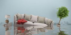 We are prepared to handle any kind of water damage. See how we can get your hom. , We are prepared to handle any kind of water damage. See how we can get your home looking brand new again! How To Clean Furniture, Home Furniture, Outdoor Furniture Sets, Mold Removal Cost, Orlando, Flooded House, Outdoor Sofa, Outdoor Decor, Cleaning