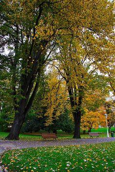 Colores de Otoño Parque de Doña Casailda Bilbao